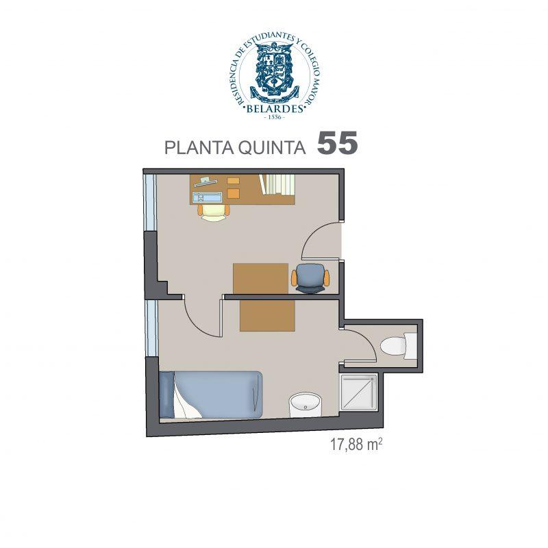 quinta 55
